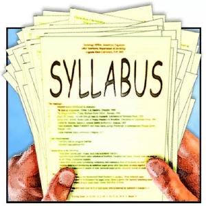 怎么看syllabus