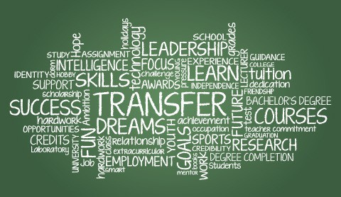 transfer-word-cloud