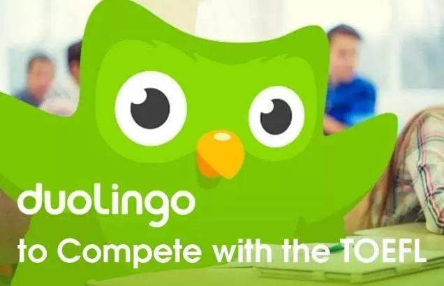 没错!这只绿色猫头鹰将率领高考生踏进美国高校大门!